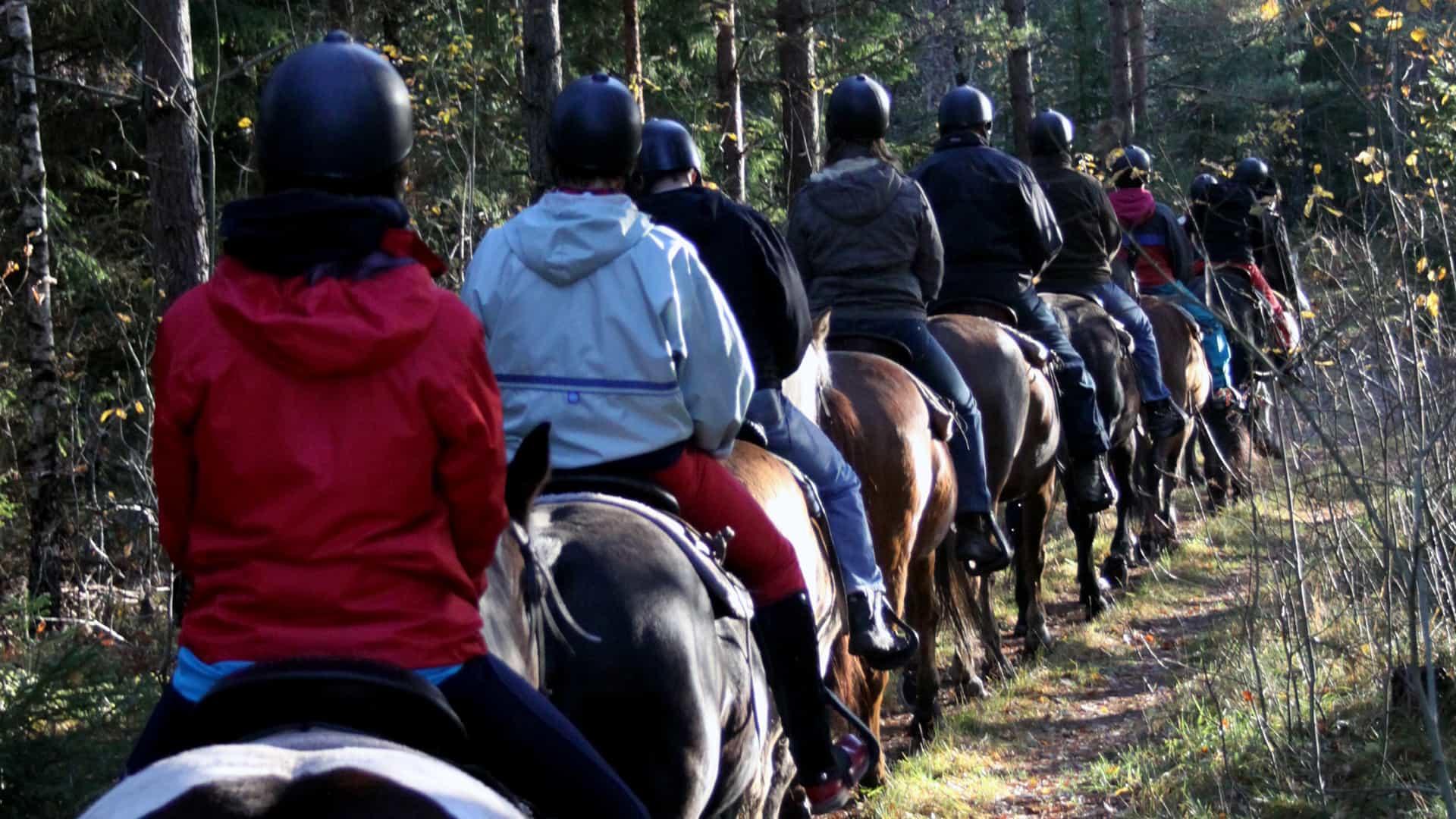 Många personer rider in i skogen, på ett led.
